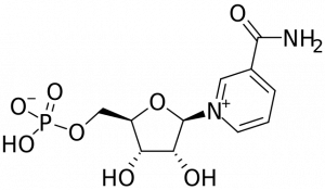 NMN chemical structure